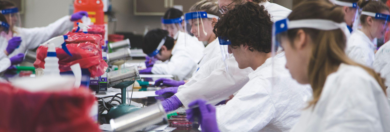 Certificate Programs Biomedical Laboratory Diagnostics Program