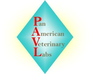 Logo for PAVL labs
